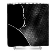 The Master Of Suspense Shower Curtain