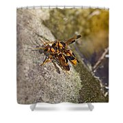 The Mating Game V3 Shower Curtain