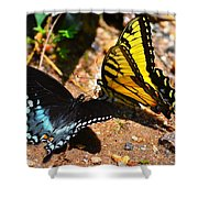 The Meeting Of The Butterflies Shower Curtain