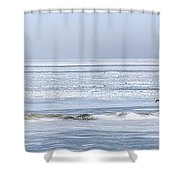 The Mighty Migration Shower Curtain