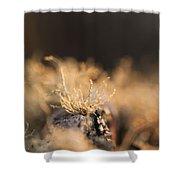 The Miniature World Of Lichen Shower Curtain