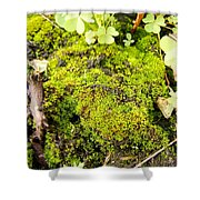 The Miniature World Of The Moss Shower Curtain