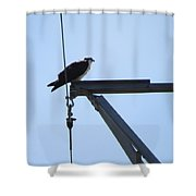 The Mister Shower Curtain