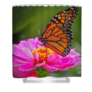 The Monarch's Flower Shower Curtain