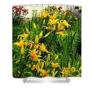 The Month Of May Shower Curtain