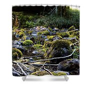 The Moss In The River Stones Shower Curtain