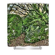 The Mossy Creatures Of The Old Beech Forest Shower Curtain