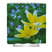 The Most Beautiful Flowers Shower Curtain