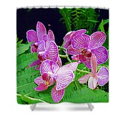 The Most Wonderful Flowers Shower Curtain