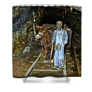 The Mule Boy Shower Curtain