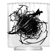 The Murder Of Crows By Jammer Shower Curtain