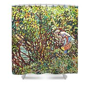 The Mushroom Picker Shower Curtain