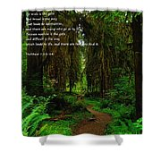 The Narrow Way Shower Curtain