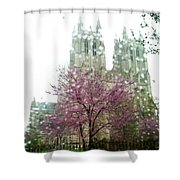 The National Cathedral  Shower Curtain