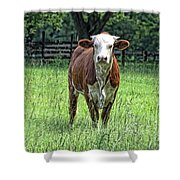 The Neighbor Shower Curtain by Jan Amiss Photography