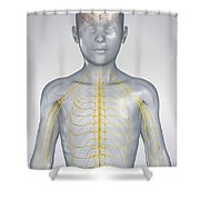 The Nervous System Child Shower Curtain