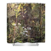 The Net Shower Curtain