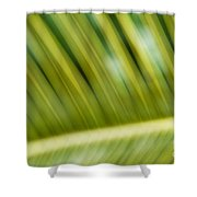 The Noble Art Shower Curtain