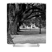 The Oaks Of Audubon Park Shower Curtain