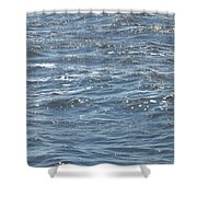The Ocean Shower Curtain