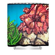 The Odd Couple Two Very Different Sea Anemones Cohabitat Shower Curtain