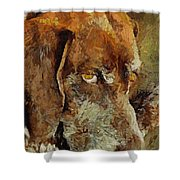 The Old Boy Shower Curtain