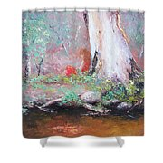 The Old Gum By The Creek Shower Curtain