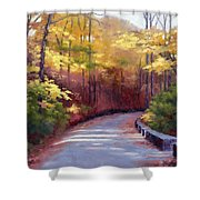 The Old Roadway In Autumn II Shower Curtain