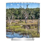 The Old Tree Graveyard Shower Curtain