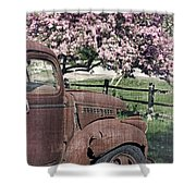 The Old Truck And The Crab Apple Shower Curtain by Edward Fielding