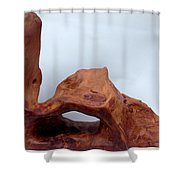 The Oldest Wood In The World Shower Curtain