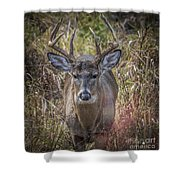 The One You Look For Shower Curtain