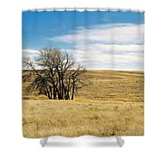 The Other Colorado Shower Curtain