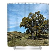 The Other Side Of Spain Shower Curtain