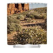 The Outcropping Shower Curtain
