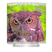 The Owl... Shower Curtain