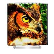 The Owl's Eye Shower Curtain