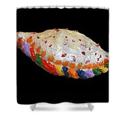 The Painted Calzone Shower Curtain