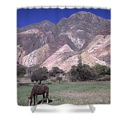 The Painters Palette Jujuy Argentina Shower Curtain