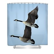 The Pair 2 Shower Curtain