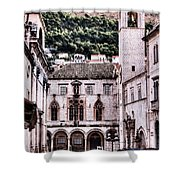 The Palace And The Tower Shower Curtain