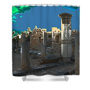 The Palaestra -temple Of Apollo Shower Curtain
