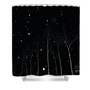 The Park In Winter Shower Curtain