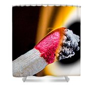 The Passing Shower Curtain