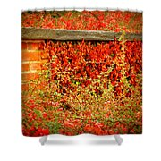 The Passion Wall Shower Curtain
