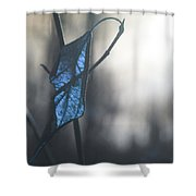 The Past Presents  Shower Curtain