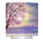 The Pastel Dreams Of Winter Shower Curtain