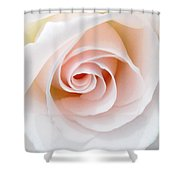 The Pastel Rose Shower Curtain