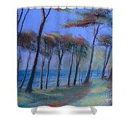 The Path At Lands End Shower Curtain