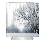 The Path Of A Wandering Soul Shower Curtain